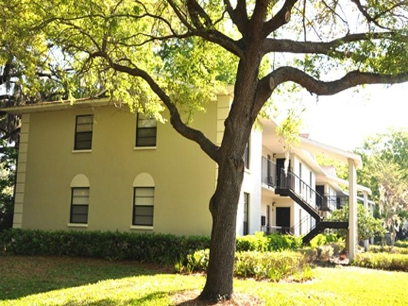 8450 Standish Bend Dr, Tampa, FL 33615