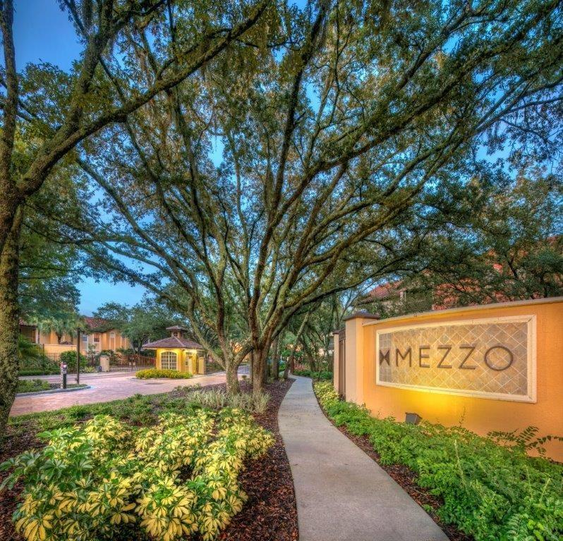 mezzo of tampa palms 15210 amberly dr apartment for rent. Black Bedroom Furniture Sets. Home Design Ideas