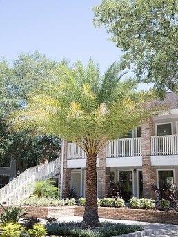 3110 Grand Pavilion Dr, Tampa, FL 33613