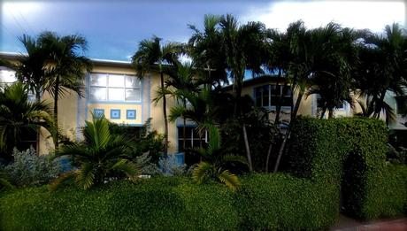 1061 Euclid Ave Apt 203 Miami Beach, FL 33139