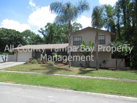4302 Hollow Hill Dr Tampa, FL 33624
