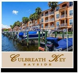 5000 Culbreath Key Way Apt 8202 Tampa, FL 33611