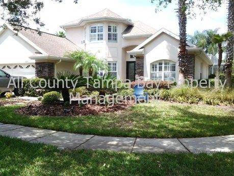 10101 Deercliff Dr Tampa, FL 33647