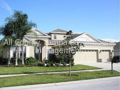 10530 Palm Cove Ave Tampa, FL 33647
