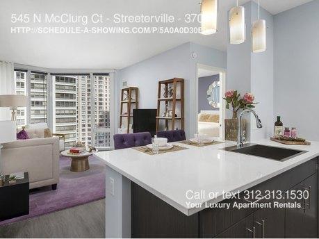 547 N Mcclurg Ct Chicago, IL 60611