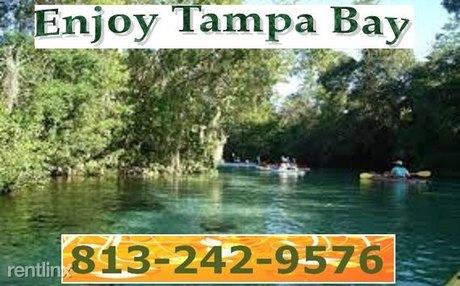 5015 Habersham Ln, Tampa, FL 33619
