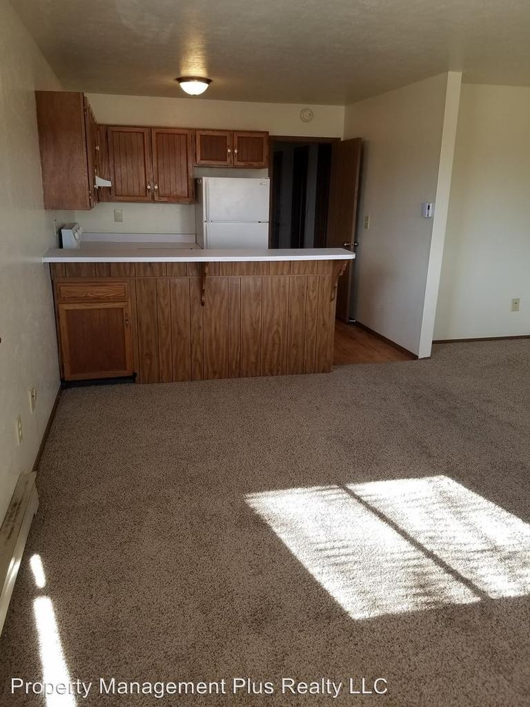 513 West Geneseo St 513 W Geneseo St Apartment For Rent