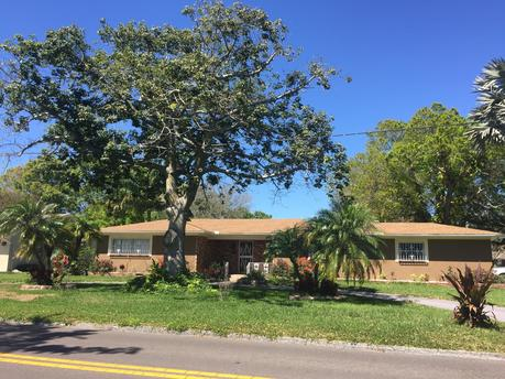 4214 N River View Ave # 33607 Tampa, FL 33607